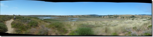 the estuary itself