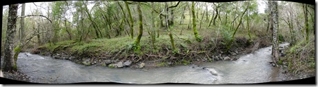 pano of a nice stream