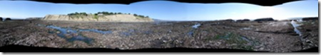 pano of Agate Beach tide out 400 pixels wide