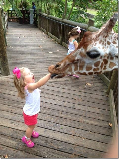 giraffeasaur