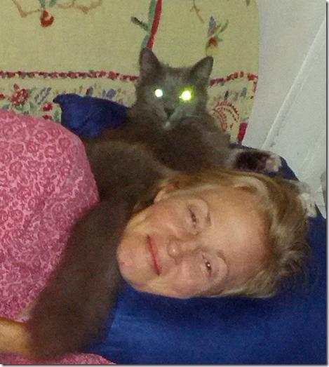 Cat stole